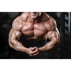 The Best SARMS for Bulking